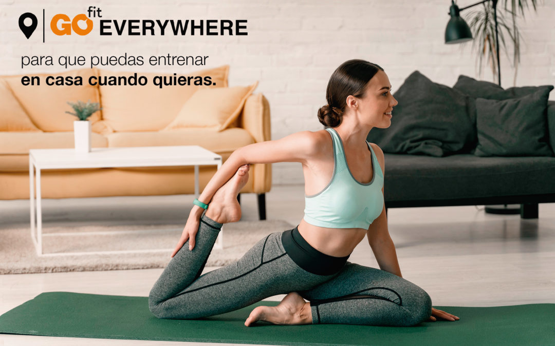 Go Fit Everywhere